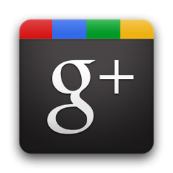 How Can Google + Help Your Business?